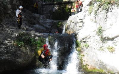 MAS diving